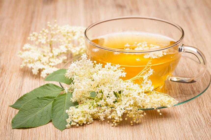 Terapias naturais para prevenir e combater a gripe